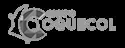 Grupo Coquecol